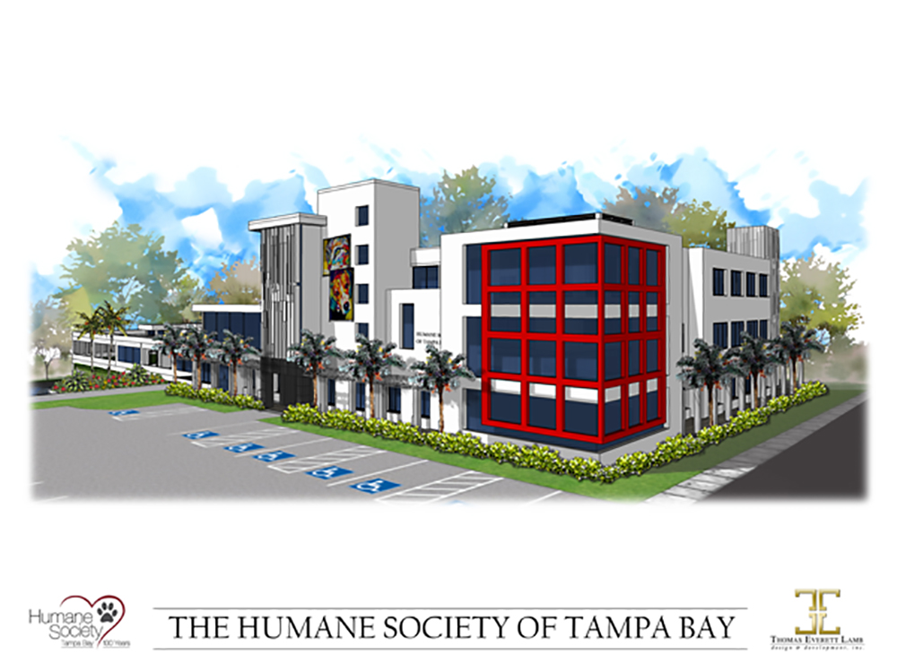 ►The Humane Society of Tampa Bay is constructing a 42,000 square-foot facility which will be named the Debartolo Family Animal Shelter at the Humane Society of Tampa Bay, thanks to a large donation from the family to the center.